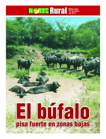 Tapa Rural.jpg