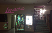 Hasta el 18 de agosto se recibirán cortometrajes para el Festival Lapacho 2017