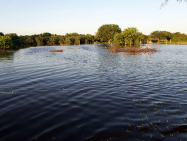 los-campos-con-agua.jpg