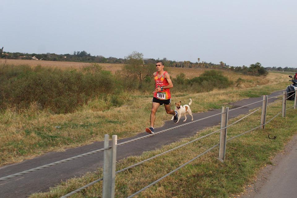 maraton96.jpg