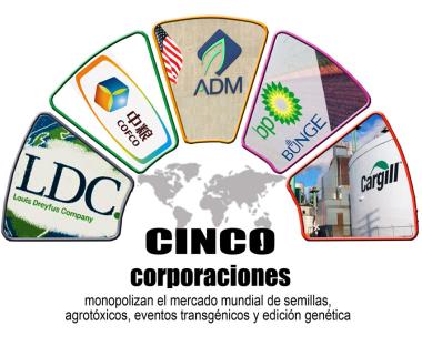 Agro5.jpg