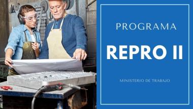 PROGRAMA-REPRO-II-MINISTERIO-DE-TRABAJO-IGNACIO-ONLINe.jpg