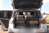 Once detenidos, tres avionetas secuestradas y más de 500 kilos de marihuana incautados