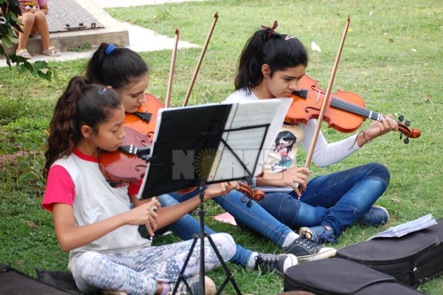 violines2.jpg