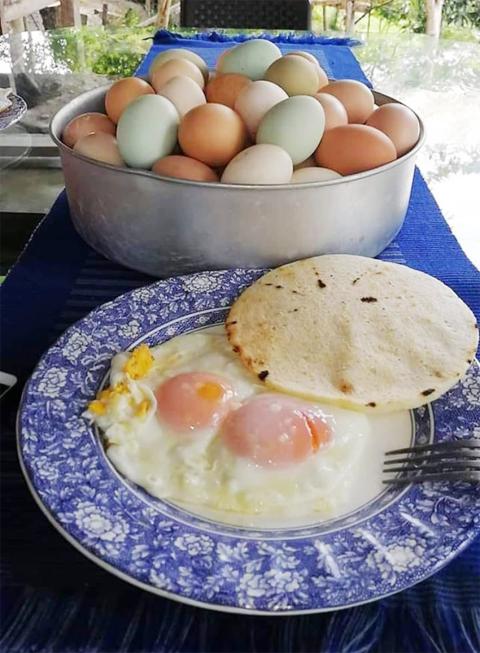 huevos.jpg