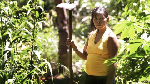 Guaraní Yasy Porá.jpg