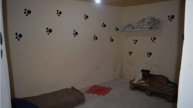 Huellas Caninas inauguró un albergue propio