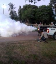 Ascienden a 43 los casos de zika y a 7 los de dengue en la provincia
