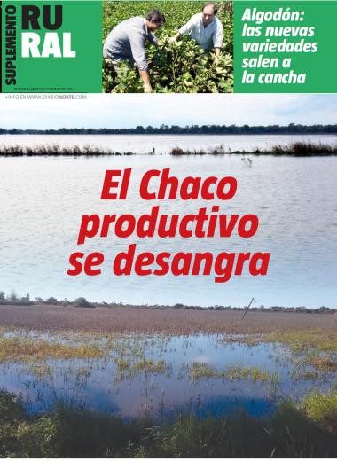 El Chaco productivo se desangra