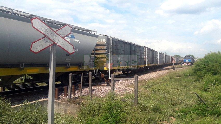 el belgrano cargas tren.jpg