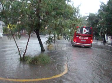 lluvvia8.jpg