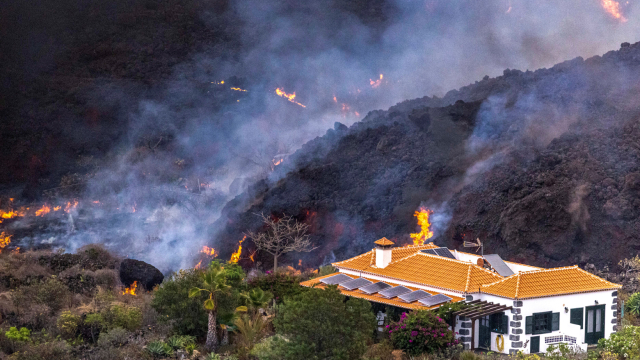 Agricultores se desesperan mientras el volcán arrasa la cosecha de plátanos de La Palma