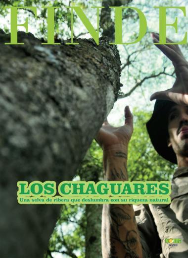 Los Chaguares