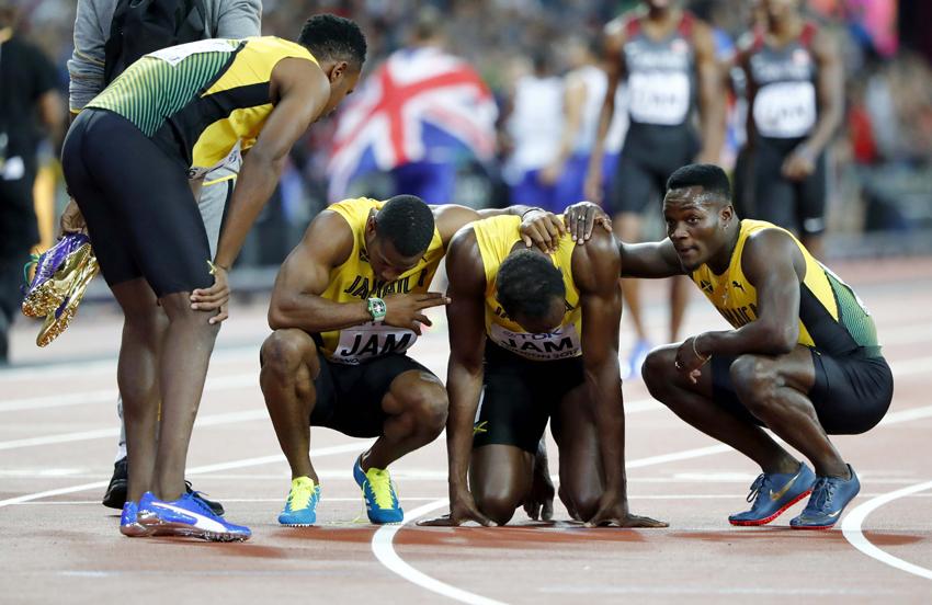 Bolt equipo.jpg