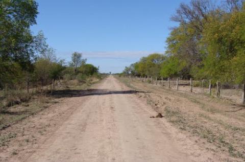 Dia del Camino 2.jpg