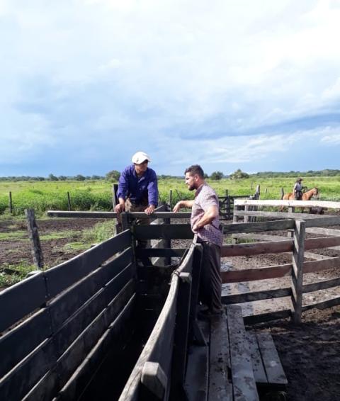 Abigeato: productor rural de San Martín denuncia constantes robos e intimidaciones