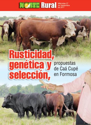 Rusticidad, genética y selección: propuestas de Caá Cupé en Formosa