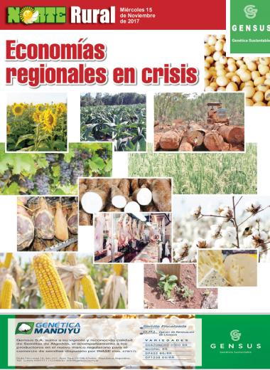 Economías regionales en crisis
