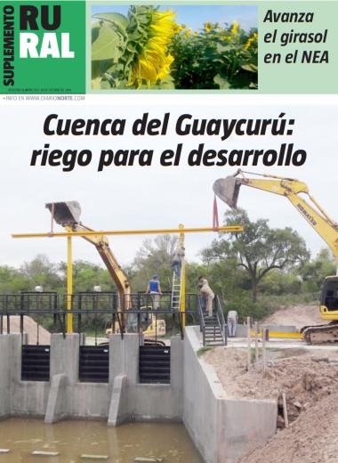 Cuenca del Guaycurú: riego para el desarrollo