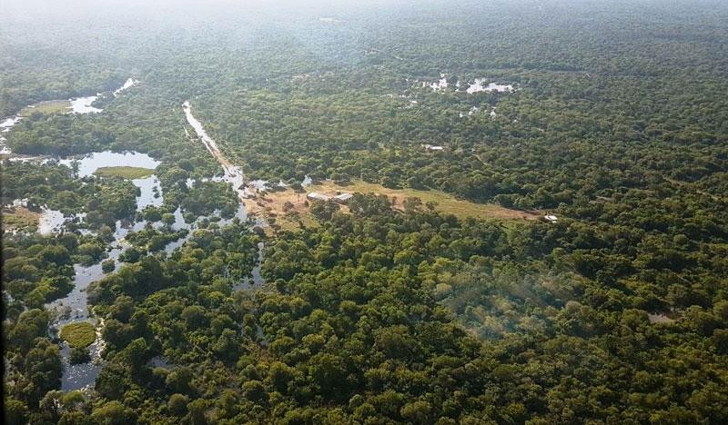 El Chaco es la provincia que más se deforestó en los últimos tres ...