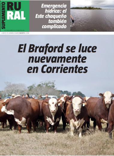 El Braford se luce nuevamente en Corrientes