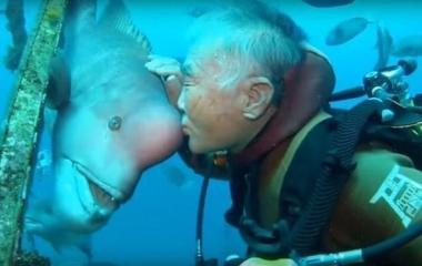 Hace 30 años visita al extraño pez al que le salvó la vida
