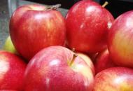 Los precios de productos agroganaderos se multiplicaron  por 4,96 veces entre el campo y la góndola