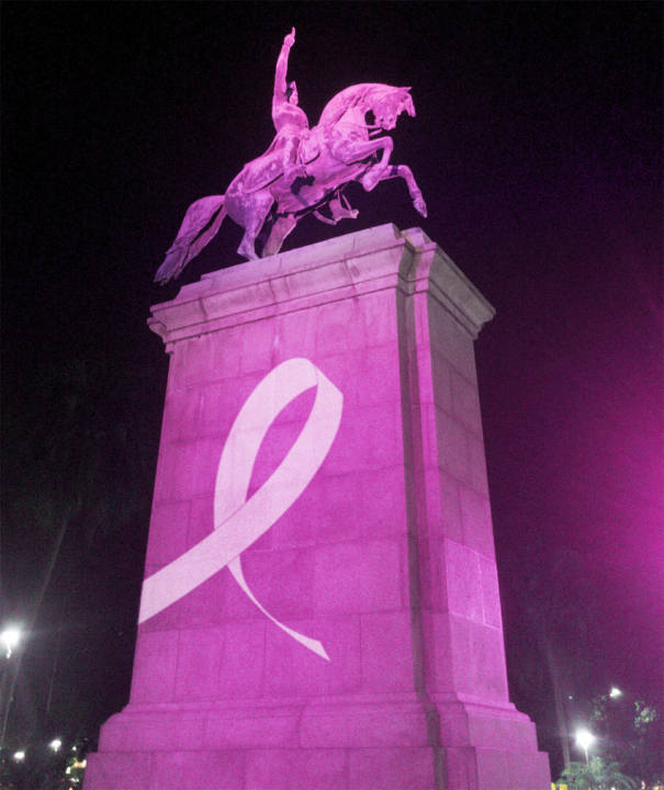 San Martin rosa.jpg