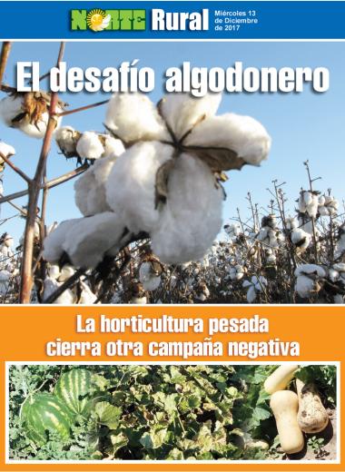 El desafío algodonero