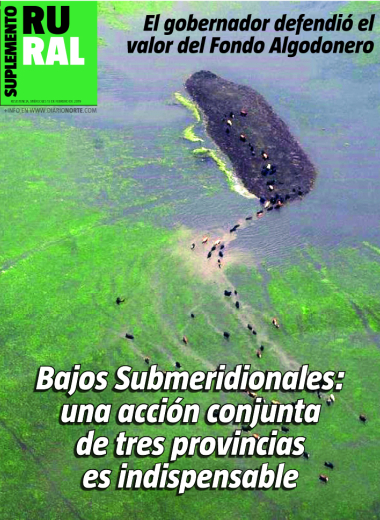 Bajos Submeridionales: una acción conjunta de tres provincias es indispensable