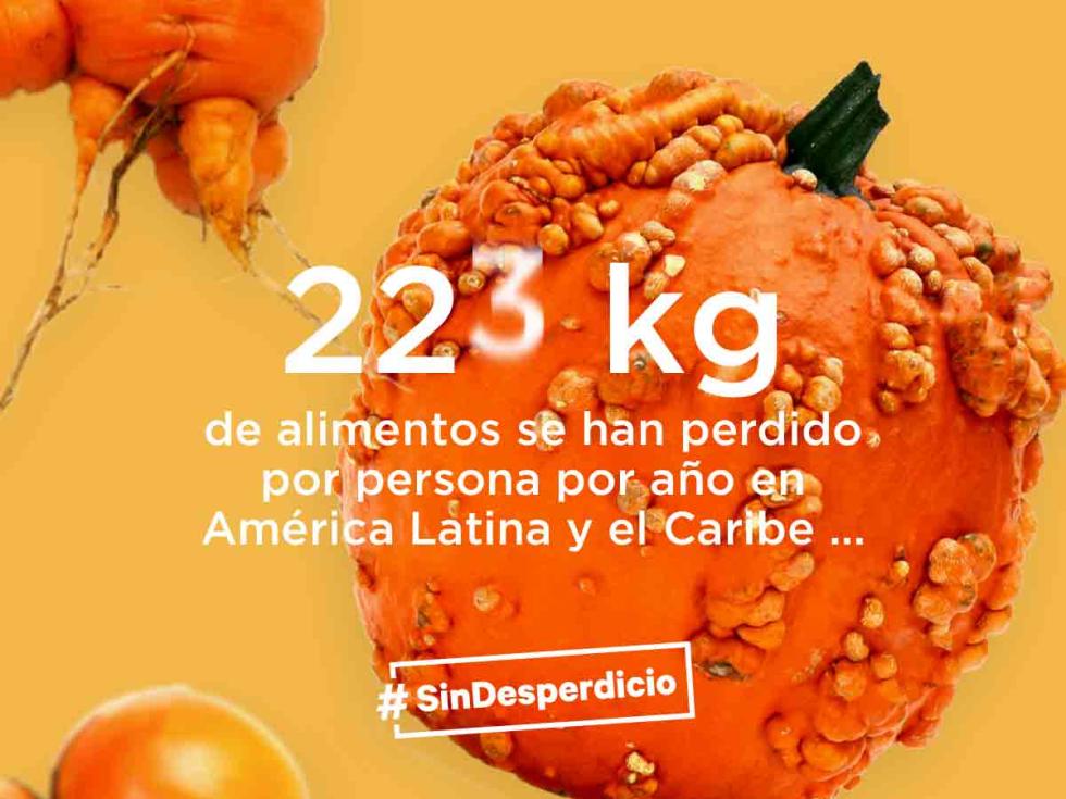 Resultado de imagen para america latina desperdicio de comida