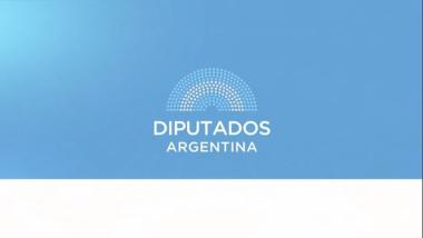 VIDEOCONFERENCIA COMPLETA (Parte 2/2): H. Cámara de Diputados de la Nación - 7 de julio de 2020