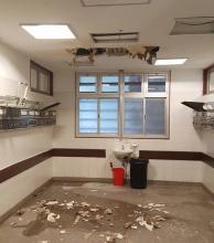 Cayó el techo de Neonatología del Hospital Perrando y derivaron los pacientes a otro sector