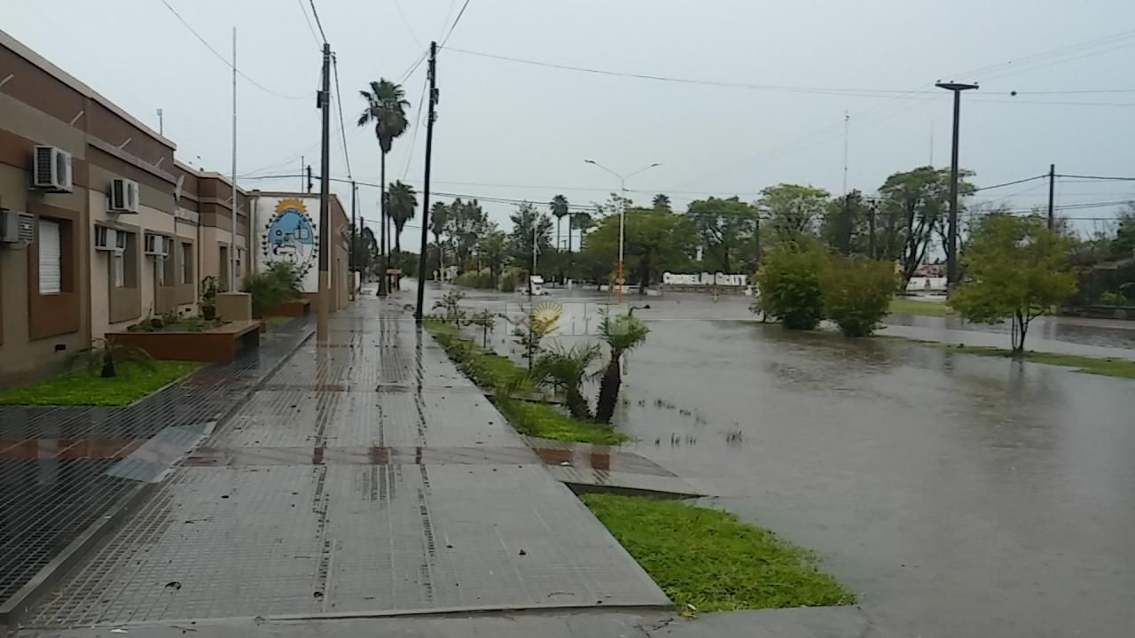 Frente del Municipio Local - 20200121_083141.jpg