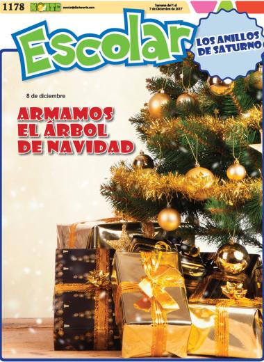 Armamos el árbol de navidad