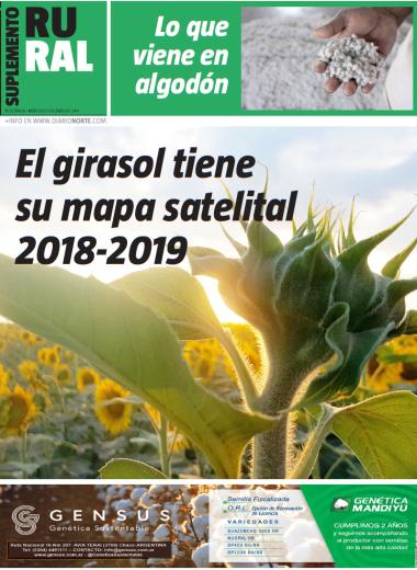 El girasol tiene su mapa satelital 2018-2019