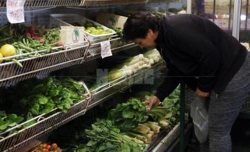 Alimentos que ayudan a  fortalecer el sistema inmunológico