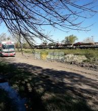 Un tren del Belgrano Cargas quedó parado en zona urbana