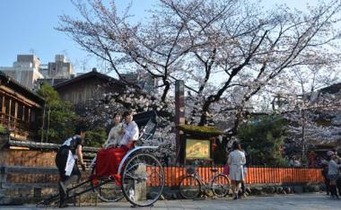 Japon paisaje.jpg