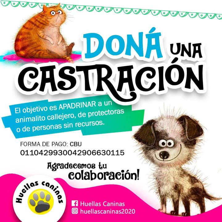 cartel castracion.jfif