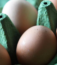 España detecta huevo líquido contaminado en una nueva extensión  de la crisis
