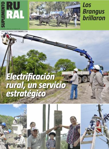 Electrificación rural, un servicio estratégico