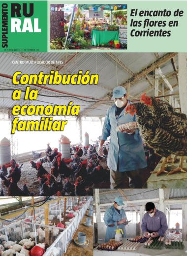 Contribución a la economía familiar