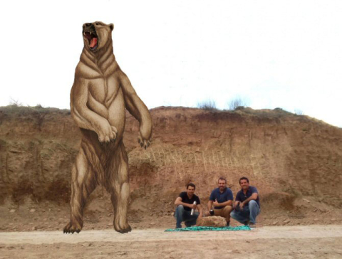 Representación-del-oso,-jun.jpg