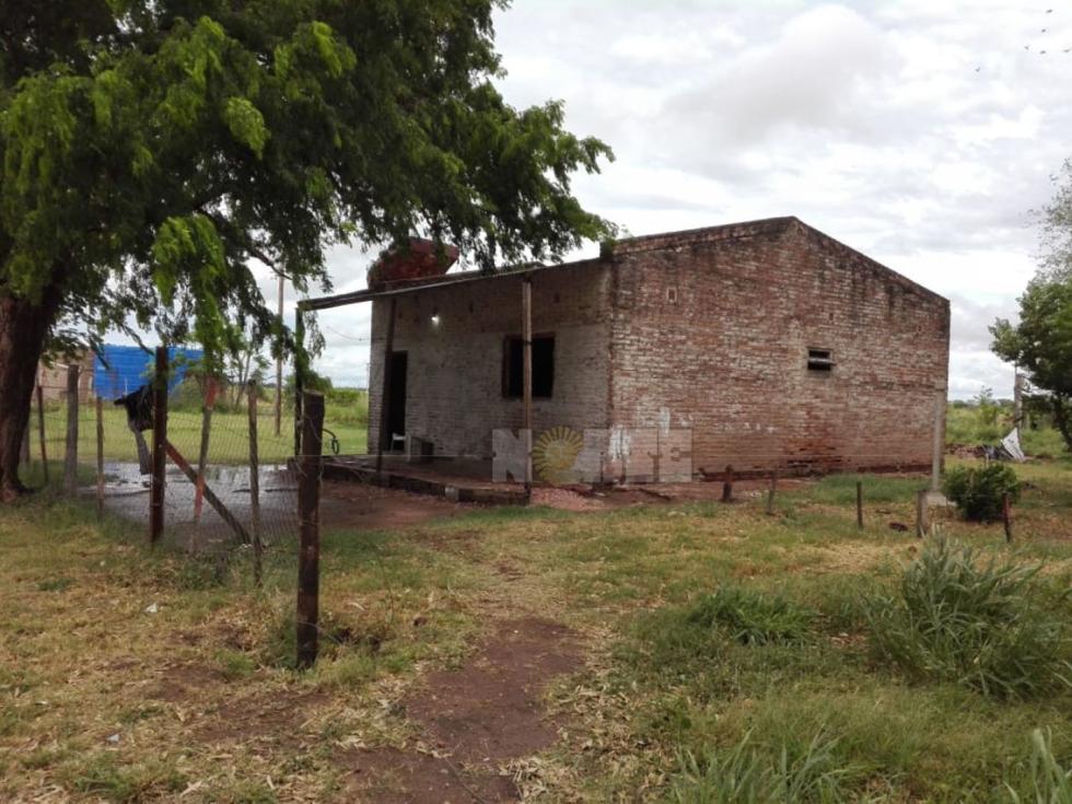58vivienda vivero.jpg