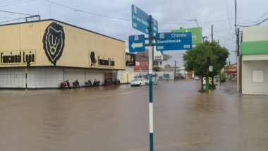 Charata lluvia 2.jpeg
